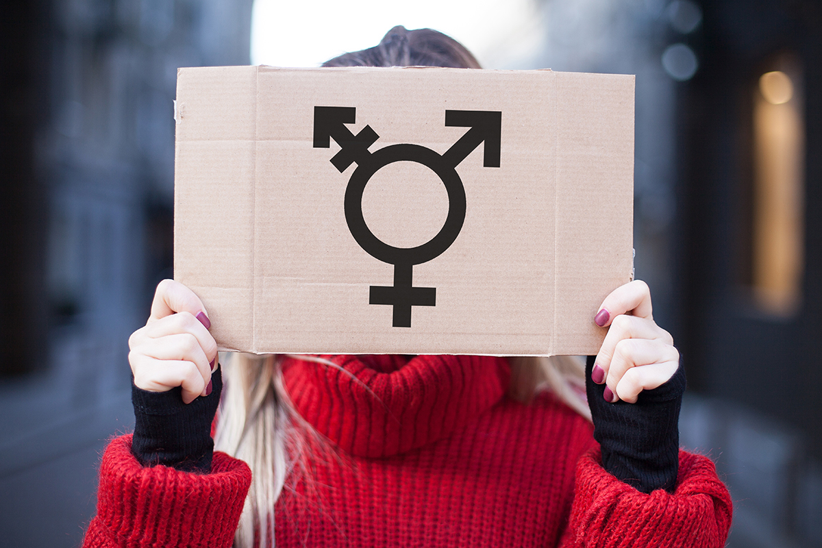 The symbol of the transgender in hands on a cardboard plate, cov
